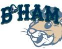 bellingham bells pcl logo generic 1