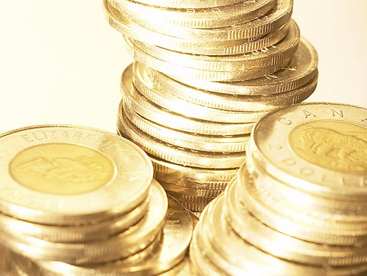 Drop in loonie value not expected to affect Canadian shoppers