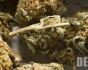 marijuana dea