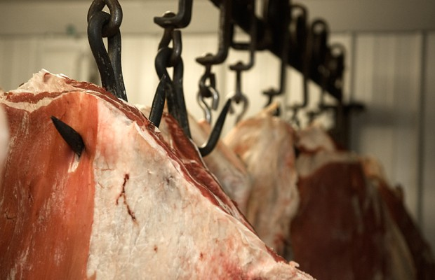 Slaughterhouse rules back on table