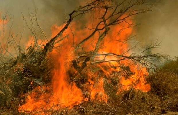 County burn ban begins Monday