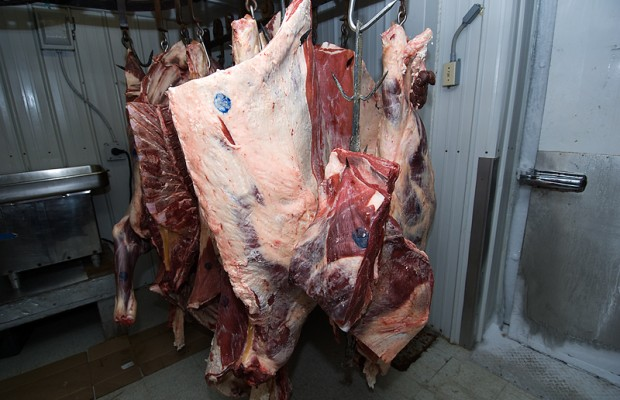 Council approves slaughterhouses on farmland