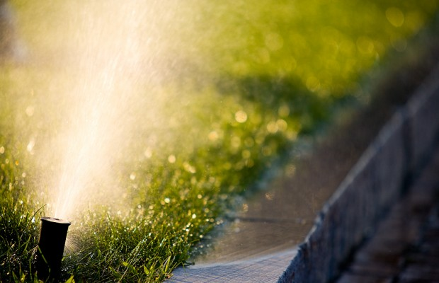 Watering schedule helps conservation