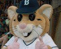 Bellingham Bells mascot Dinger. (Photo -Doug Lange)