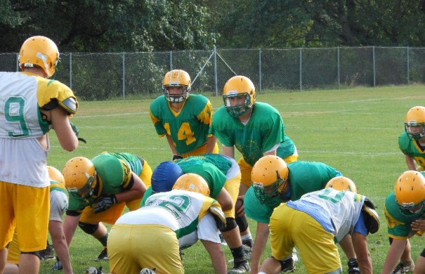 Lynden Lions top 2A football poll