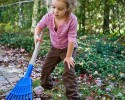 kid raking