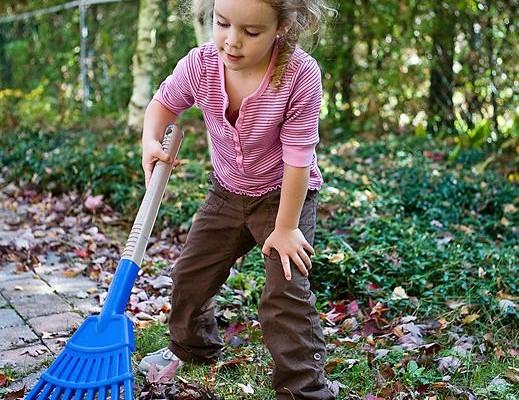 Yard waste disposal deadline approaching