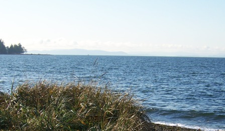 Birch Bay waterway plan stalls as park plan moves forward