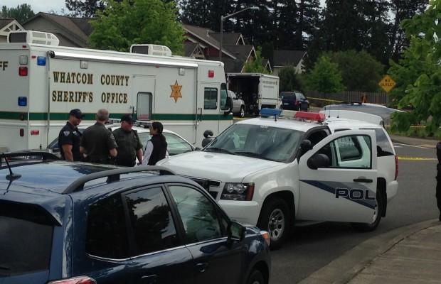 Attacker's girlfriend arrested in Ferndale stabbing