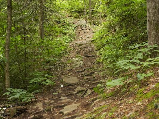 Teen boy dies after hiking fall at Mount Pilchuck