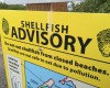 File photo of a sign warning the public not to eat shellfish from closed beaches on the Semiahmoo spit.