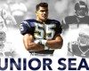 Former linebacker Junior Seau was inducted into the Pro Football Hall of Fame on August 8 2015.