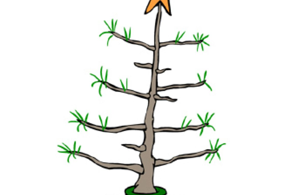 Charlie Brown Christmas Tree Image.Lucy From Charlie Brown Christmas Works At Squalicum High